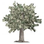 【第17回】 「USD500(約5万円)の25年」の海外積立投資の事例です。【鹿児島県 公務員 30代前半 男性】