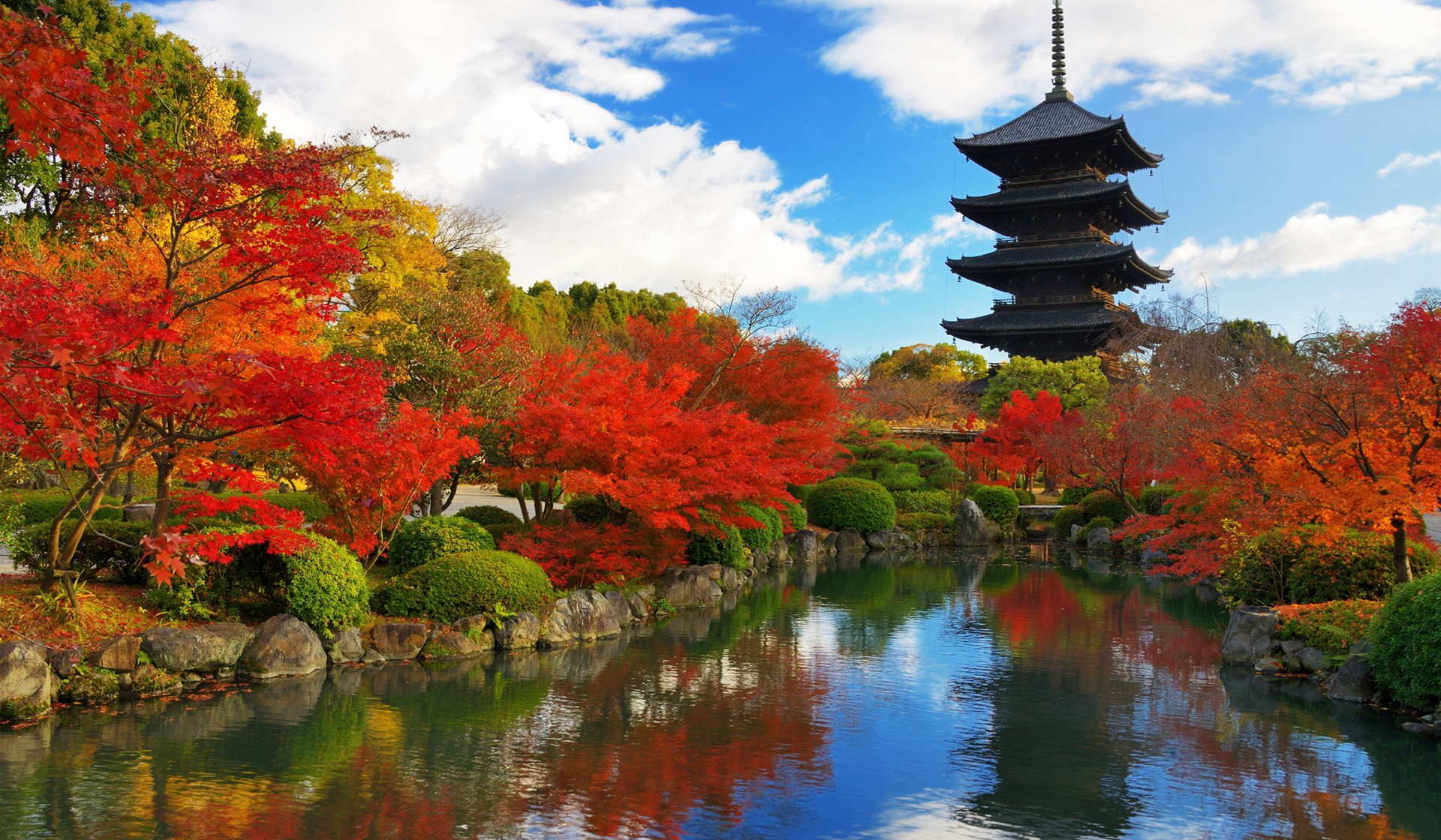 【第230回】東京、大阪、京都で個別相談会を承ります(5000円)。【9/12〜10/5】